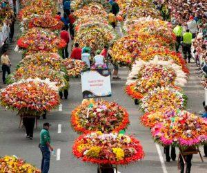 เทศกาลดอกไม้เมเดยิน