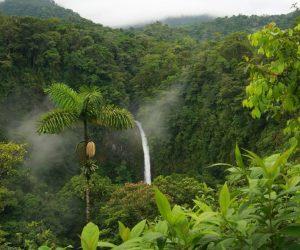 สภาพภูมิอากาศพืชและการเกษตรโคลอมเบีย
