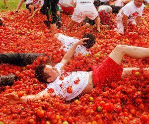 โคลอมเบีย จัดเทศกาลปามะเขือเทศประจำปี