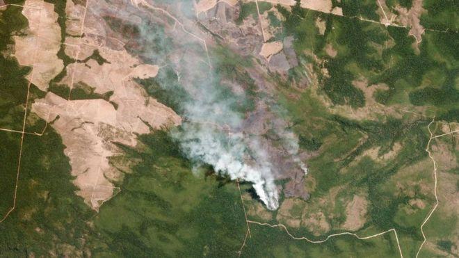 โคลอมเบียให้ป่าแอมะซอนมีสิทธิเทียบเท่าบุคคล